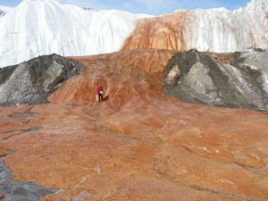 Dr. Jill Mikucki (UT-Knoxville) standing on the snout of the Taylor Glacier at Blood Falls (photo courtesy of Jill Mikucki)