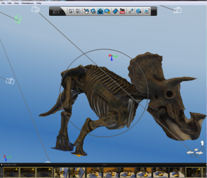 3D image of triceratops