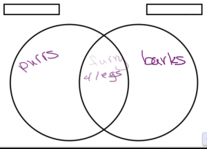 Venn Diagram comparing Cats and Dogs