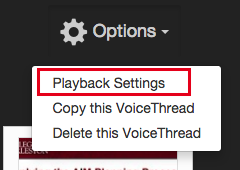 Voicethread Playback Settings