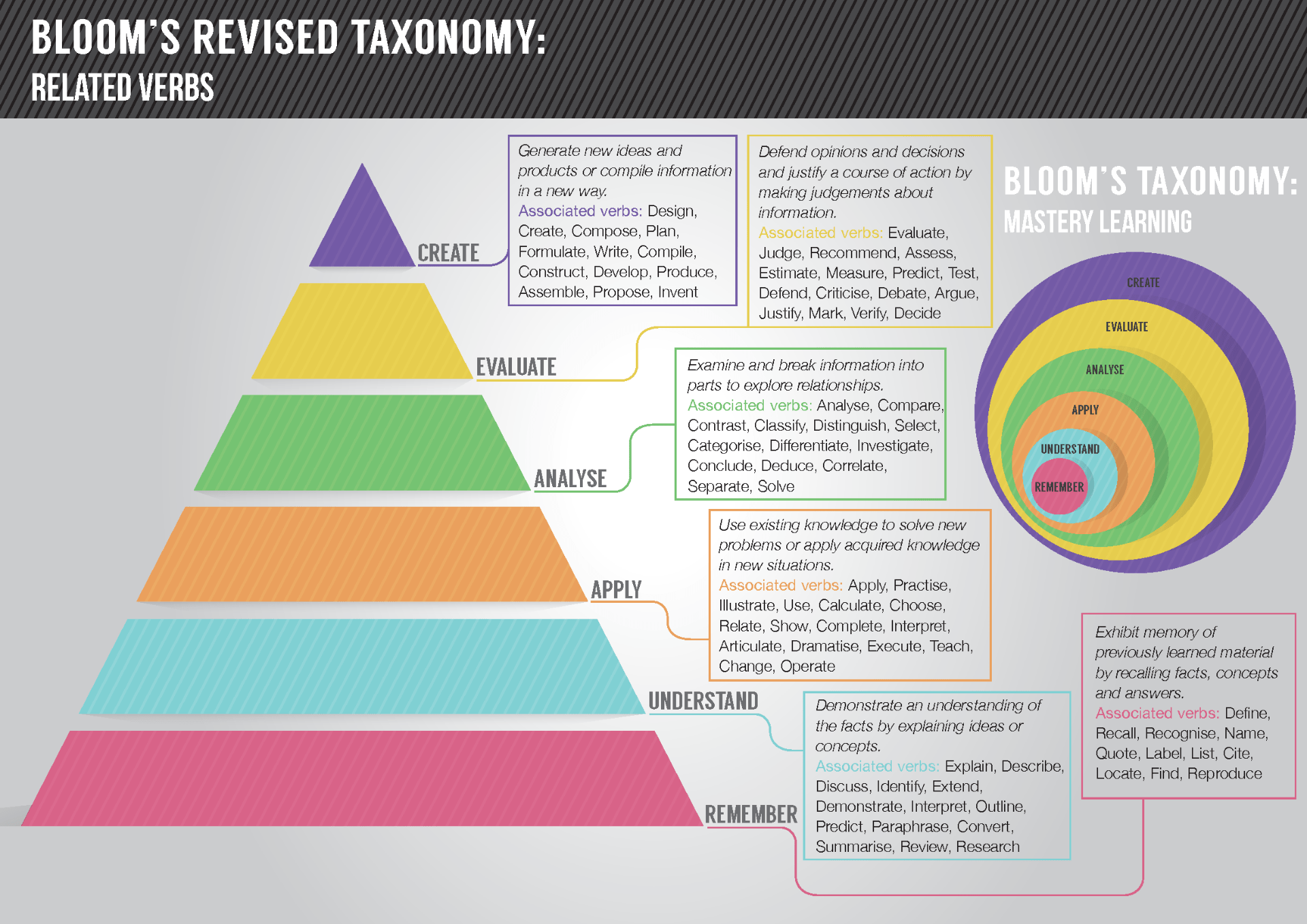Bloom's Revised Taxonomy: Related Verbs