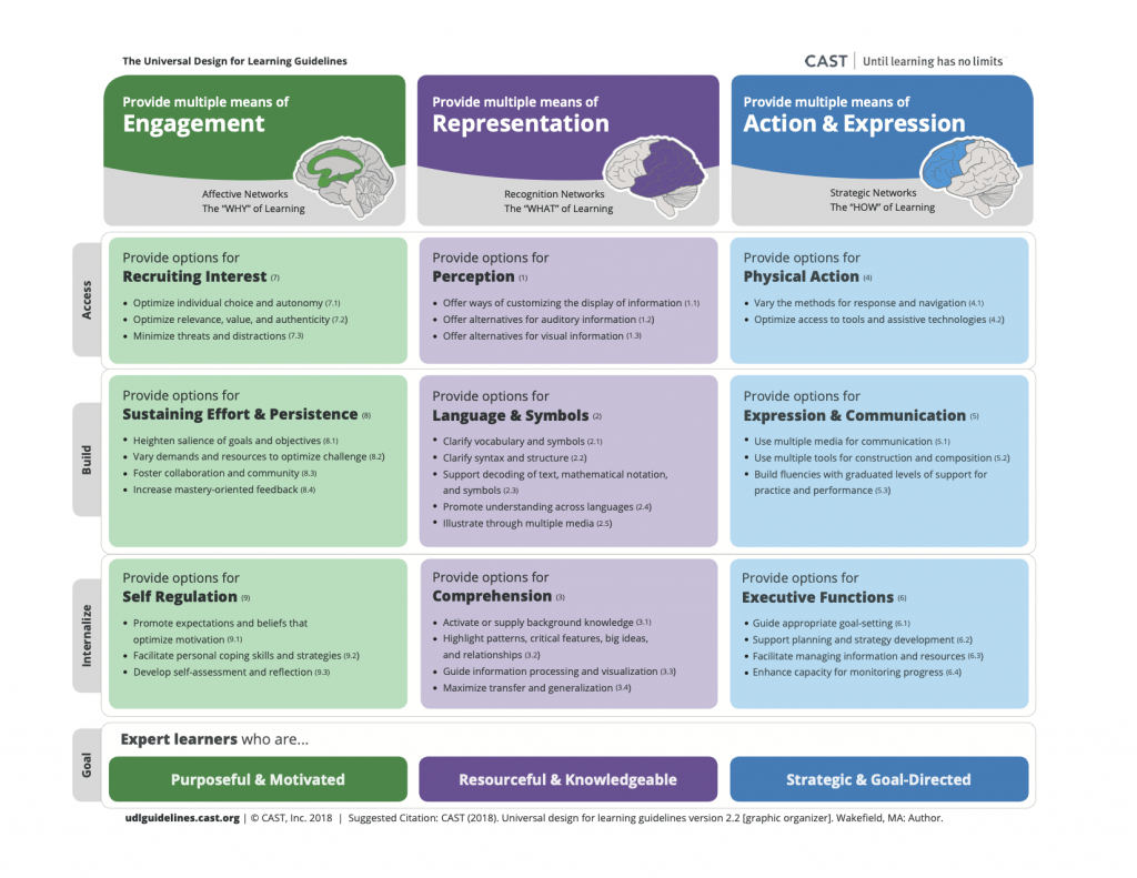 UDL Graphic Organizer. An accessible PDF is also available below.