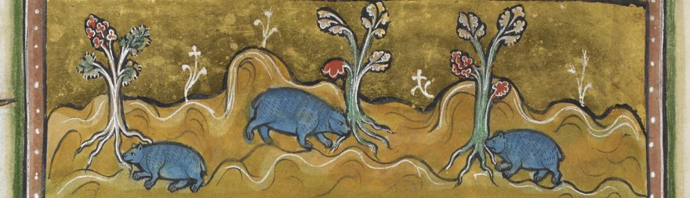ENGL 361   Medieval Natures
