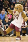 Clyde the Cougar from College of Charleston Athletics