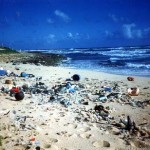 17_debris_beach2