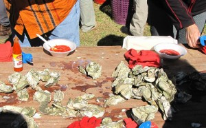 Delicious oysters from Beaufort, SC, fresh out of the steamer.