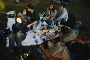 picnic small