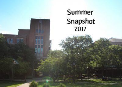 Summer Snapshot 2017