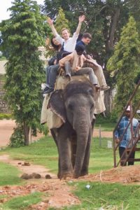Chris Huberts (BUS '09) explores India via elephant.