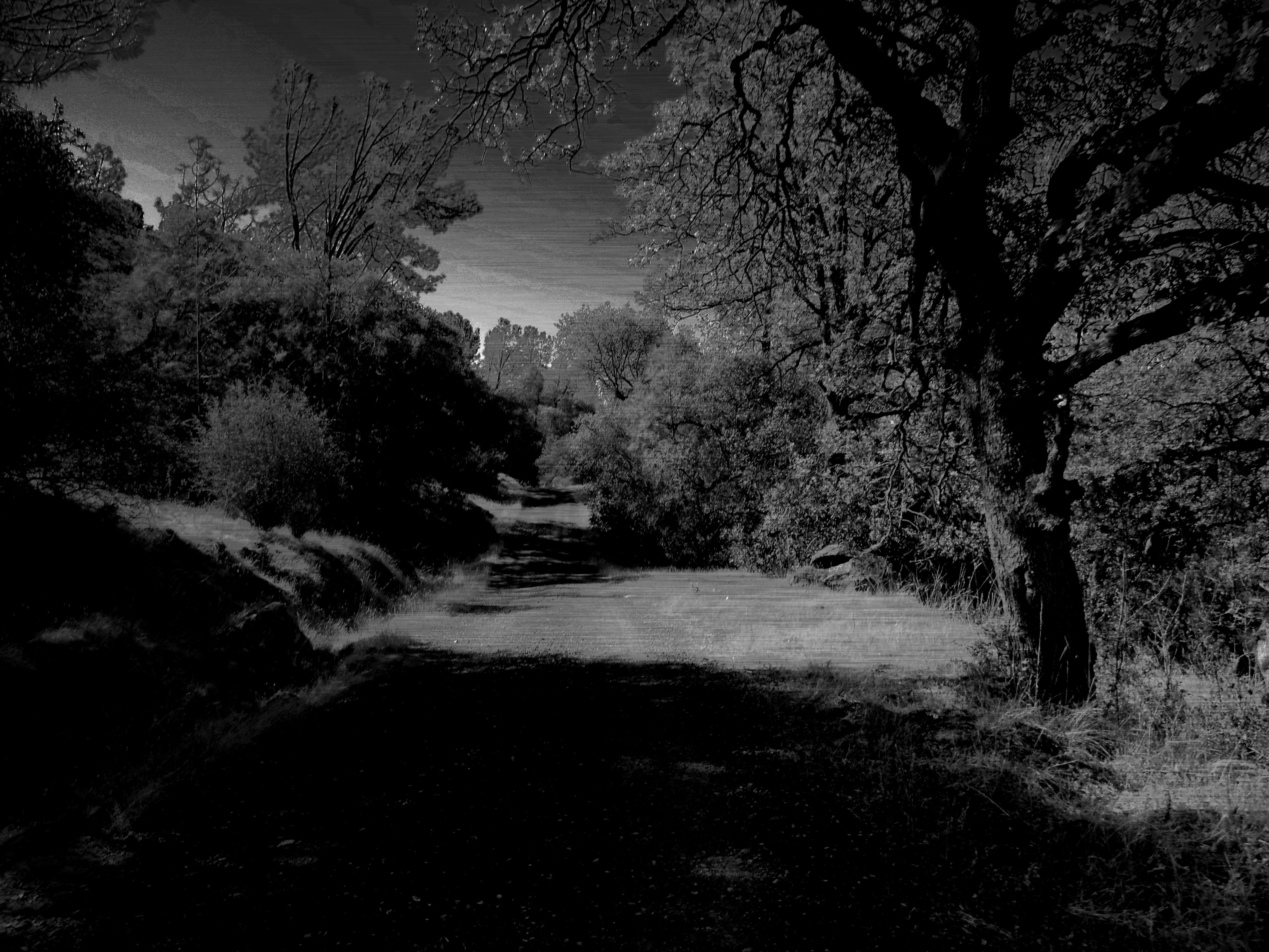 Haunted Landscapes Vo Photography