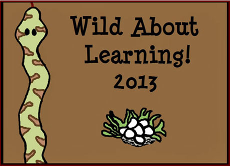 Wild About Learning Art, Stone Lake Elementary School