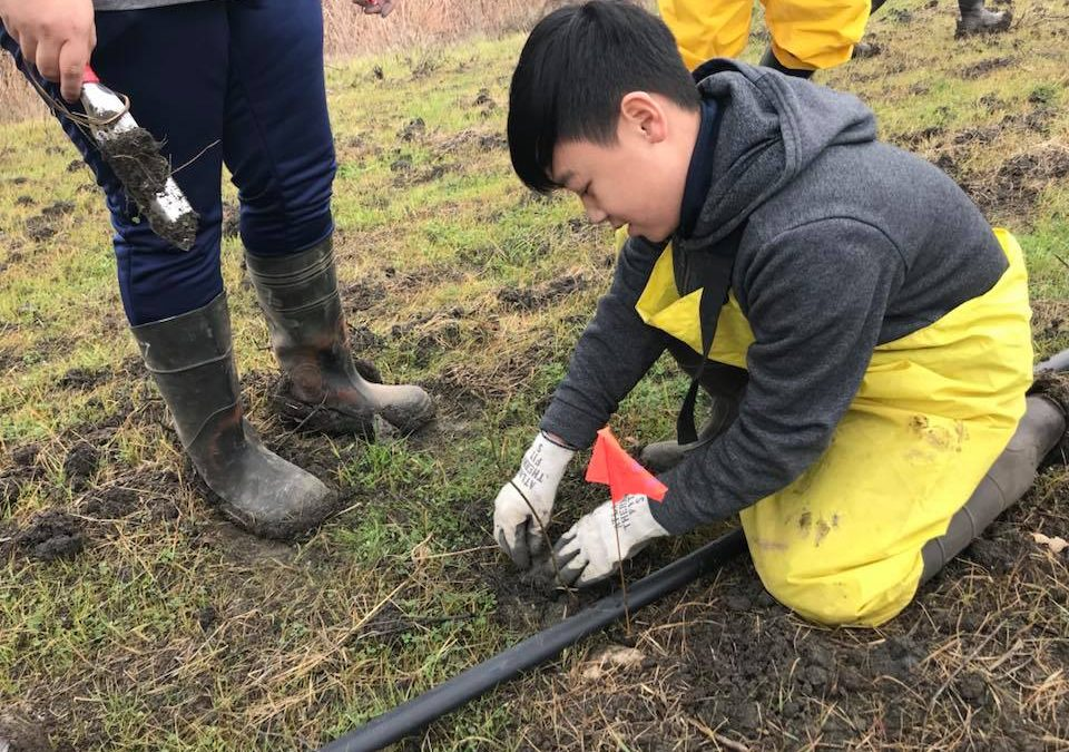 Florin's Ag-Tech Academy Participate in Restoration Project