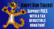 Adopt Our Tigers