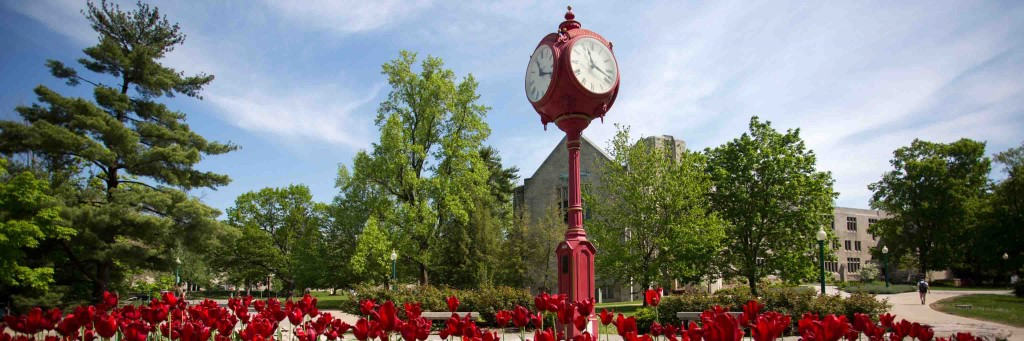 One of IU's red clocks, surrounded by red flowers. The picture was taken on campus.