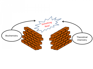 """A illustration shows the words """"biochemistry"""" and """"theoretical chemistry"""" separated by walls, but arrows pointing from the words over the walls lead to """"something new""""."""