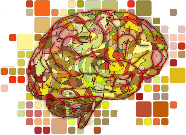 An illustration of the brain surrounded by a pattern of multicolored squares