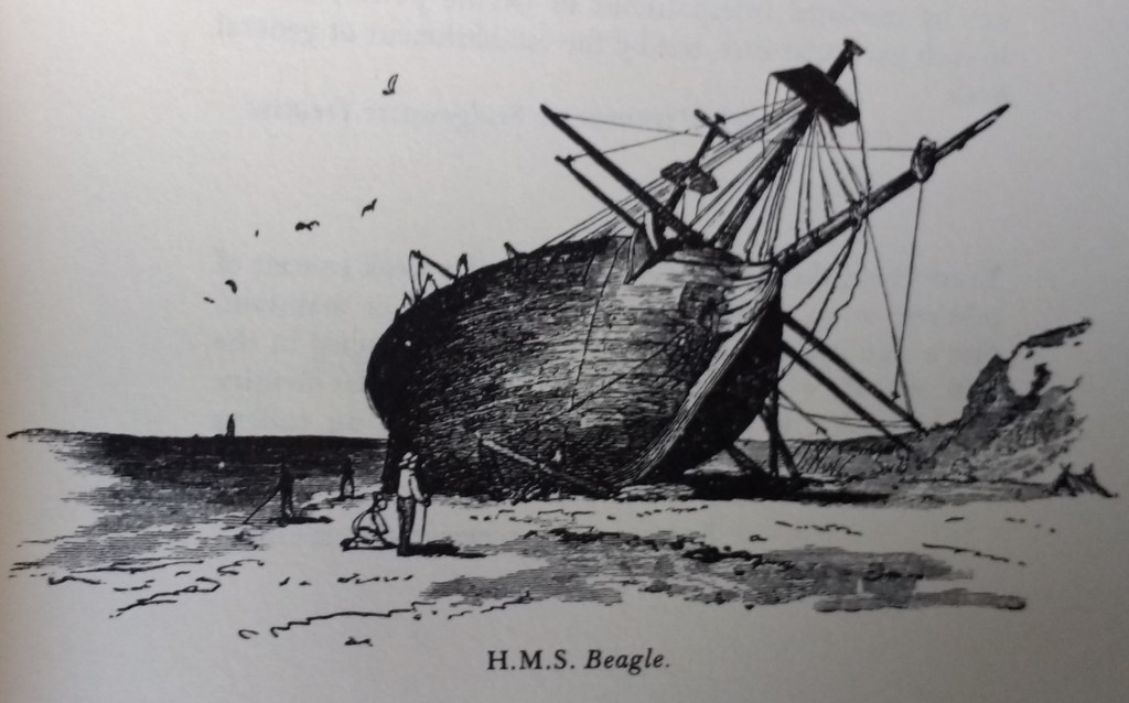 a pen drawing of a sailing ship on a beach