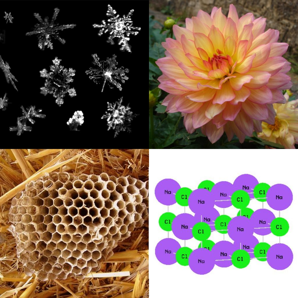 Pictures of snowflakes, a flower, a beehive, and table salt are shown.