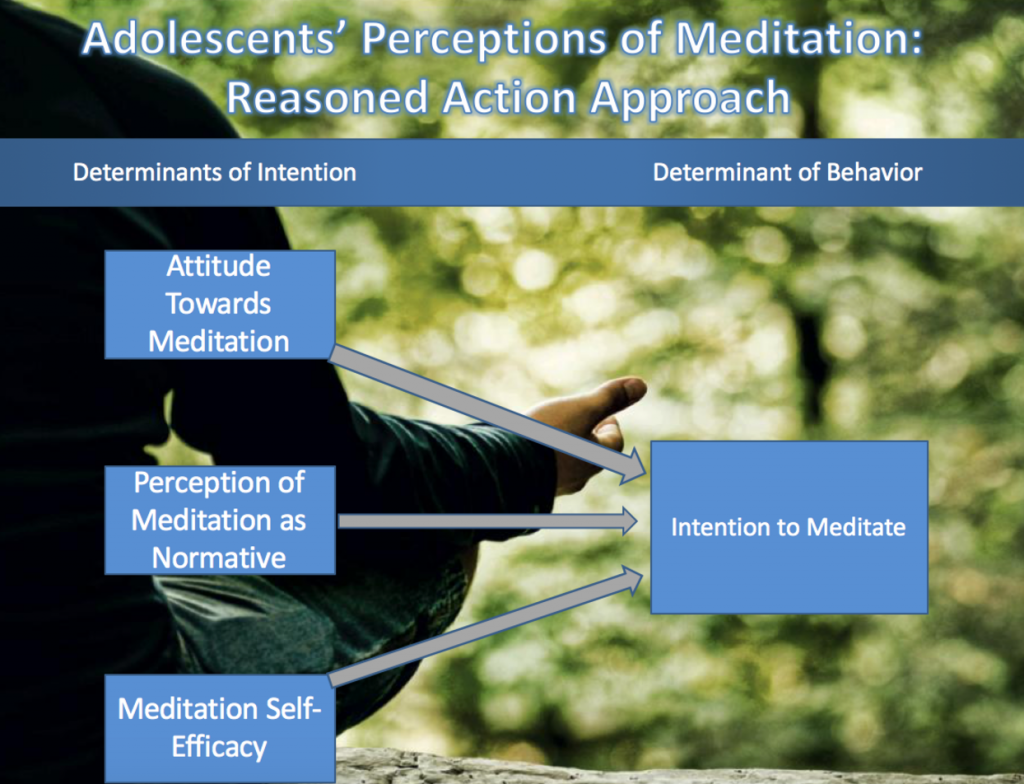 Schematic image: Adolescents' Perceptions of Meditation: Reasoned Action Approach
