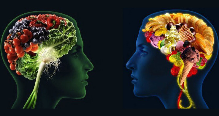 A profile view of two humans facing each other. The brain of each person is comprised of different food items, including fruits, vegetables, ice cream, and candy.