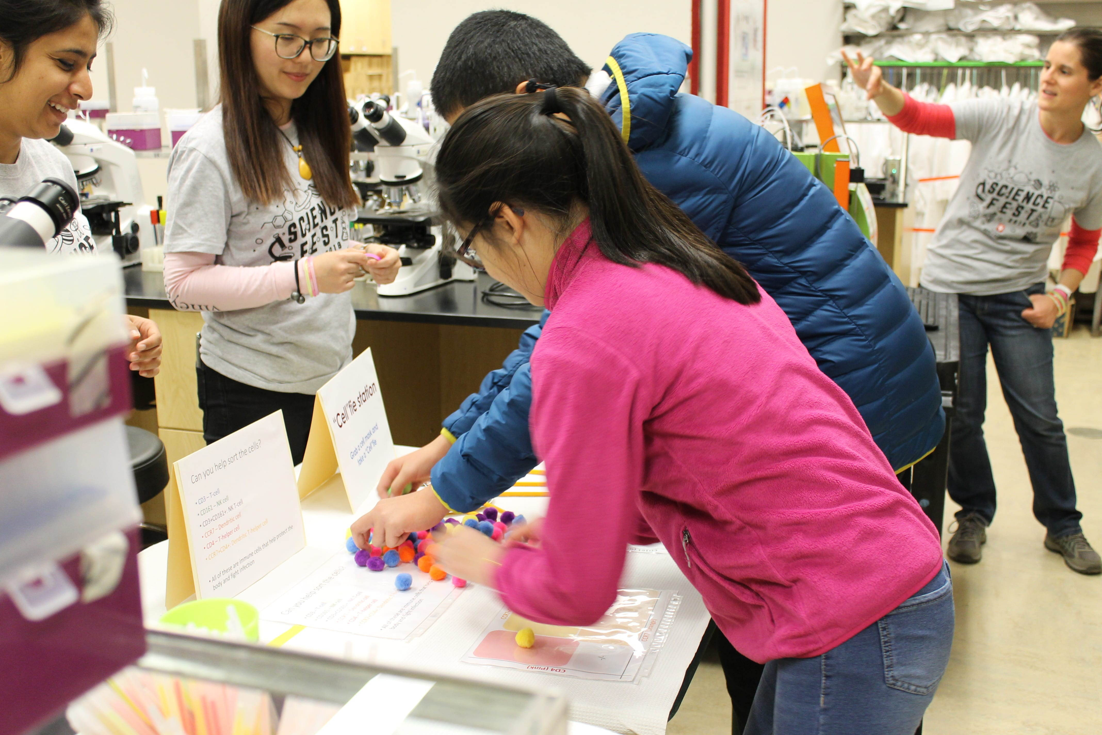 Two participants in the process of sorting cells (depicted by fuzzy pom-poms) while two science fest volunteers are cheering