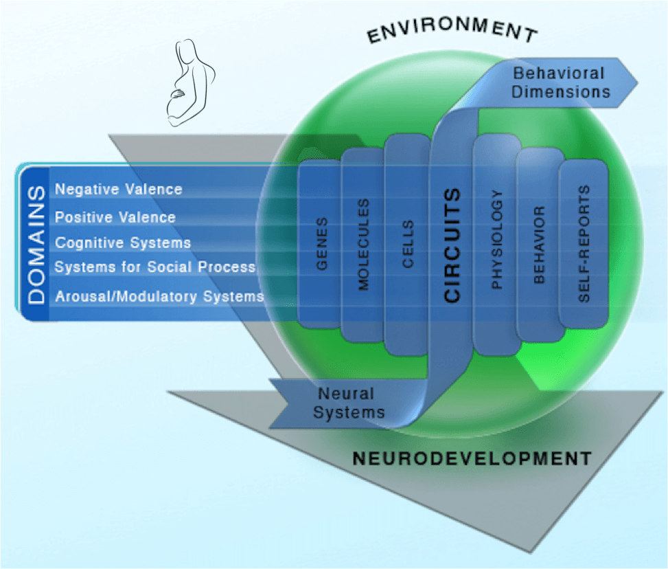 Image depicting the RDoC framework including 5 current domains of research which can be analyzed across neural and behaviorally based units of analysis. An arrow spanning the graphic indicates the importance on neurodevelopment, from conception, across all levels of research. Moreover, a green sphere encompassing the units of analysis represents the importance of environmental factors in our understanding and measurement of these constructs.