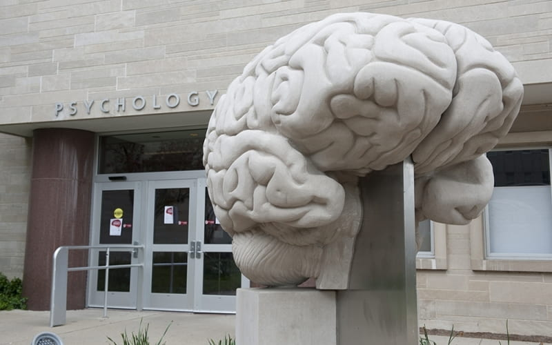 A brain sitting in front of the Psychology Building on the Indiana University Bloomington campus.
