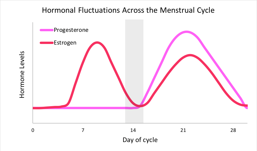 "A graph titled ""Hormonal Fluctuations Across the Menstrual Cycle"". The x-axis is labeled ""Day of Cycle"" and starts at 1 and continues to 28. The y-axis is labeled ""Hormone Levels"". A pink line indicates that progesterone is near baseline until about the 14th cycle day, at which point it increases. Progesterone peaks around day 21, and then returns to baseline by day 28. A red line indicates that estrogen is near baseline until about the 5th cycle day, after which point it increases to a peak around day 11 before briefly returning to baseline around day 14. Estrogen reaches a second peak around day 21, but remains lower than progesterone's peak. Estrogen returns to baseline around day 28."