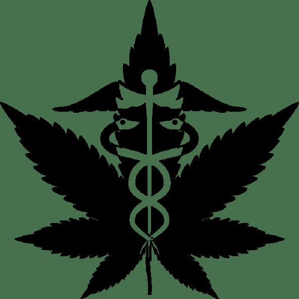 [Medicinal cannabis symbol.]