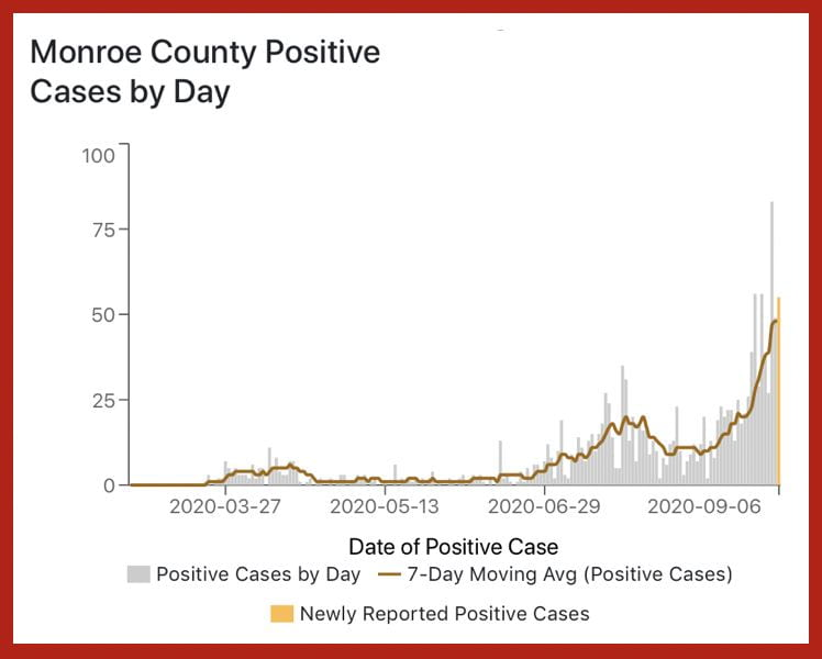A day-by-day graph of Monroe county positive cases. A sharp spike in reported cases is visible starting around august.