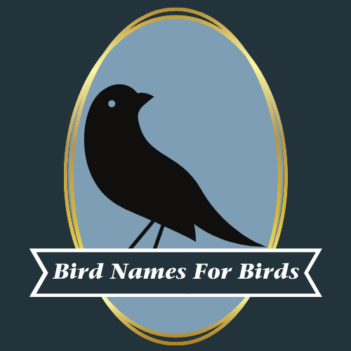 "[A drawing of a black bird is centered on the image. The bird is enclosed in a blue circle with a gold border. A black box with white text that reads ""Bird Names for Birds"" is located on top of the bird's legs.]"