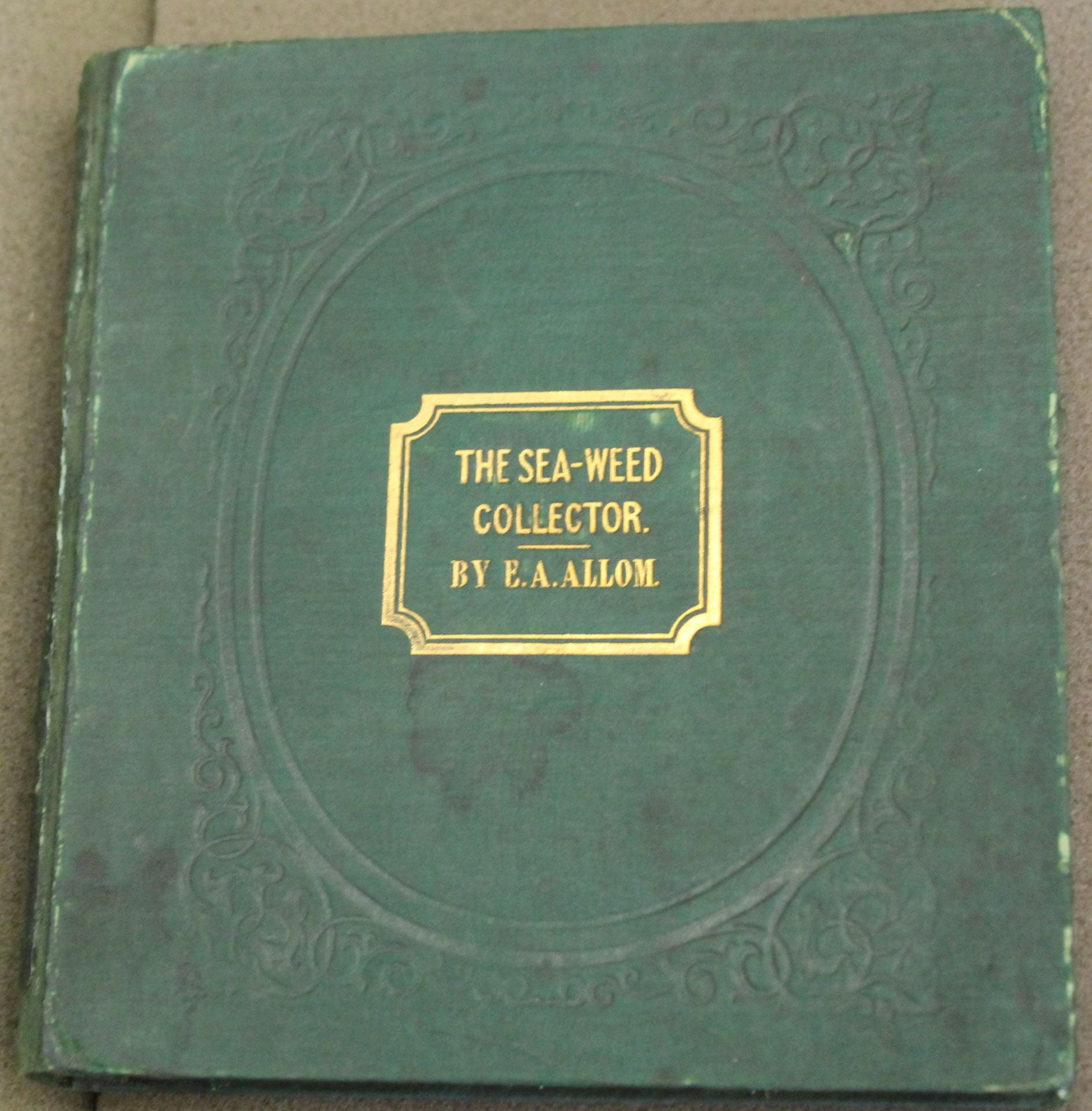 An image of a green book with a florally embossed cover, the title stamped in gold, and water stains.