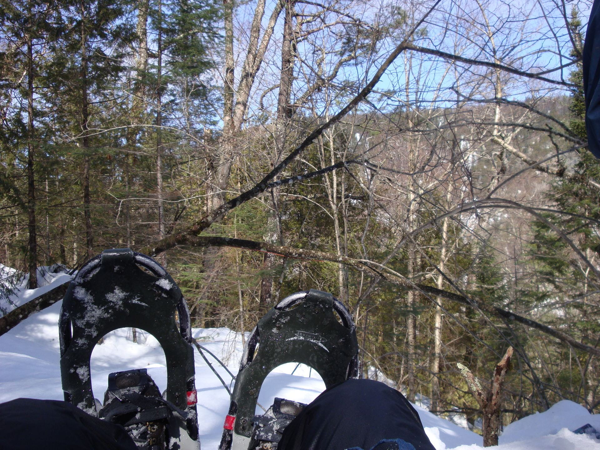 A person in snowshoes sitting on a snowy hill on a sunny day.