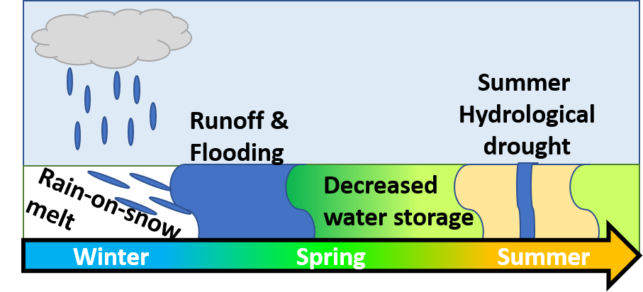 A diagram showing rainfall occurring on a snowpack, leading to rain-on-snow melt. This melt causes flooding in the winter, but then less water is stored in the snowpack or groundwater. Thus, there is lower streamflow in summer.