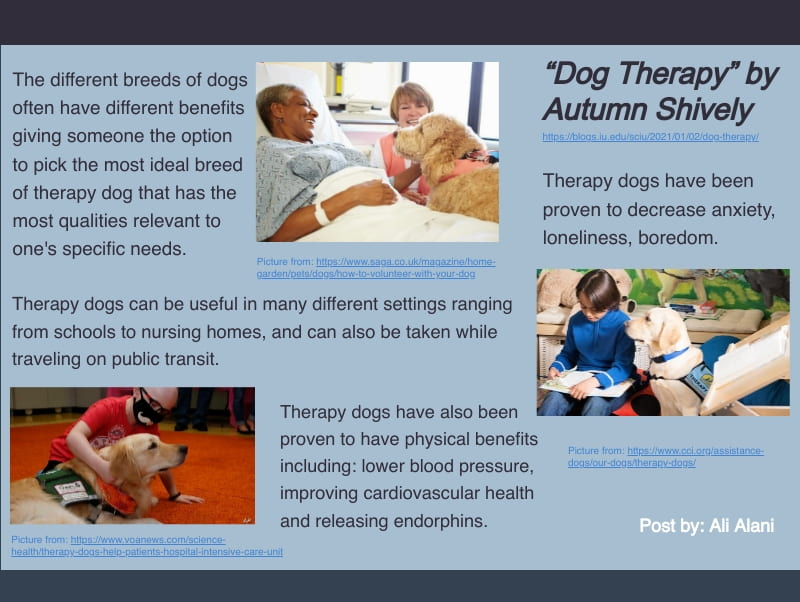 infographic about dog therapy. To read the original post go to https://blogs.iu.edu/sciu/2021/01/02/dog-therapy/
