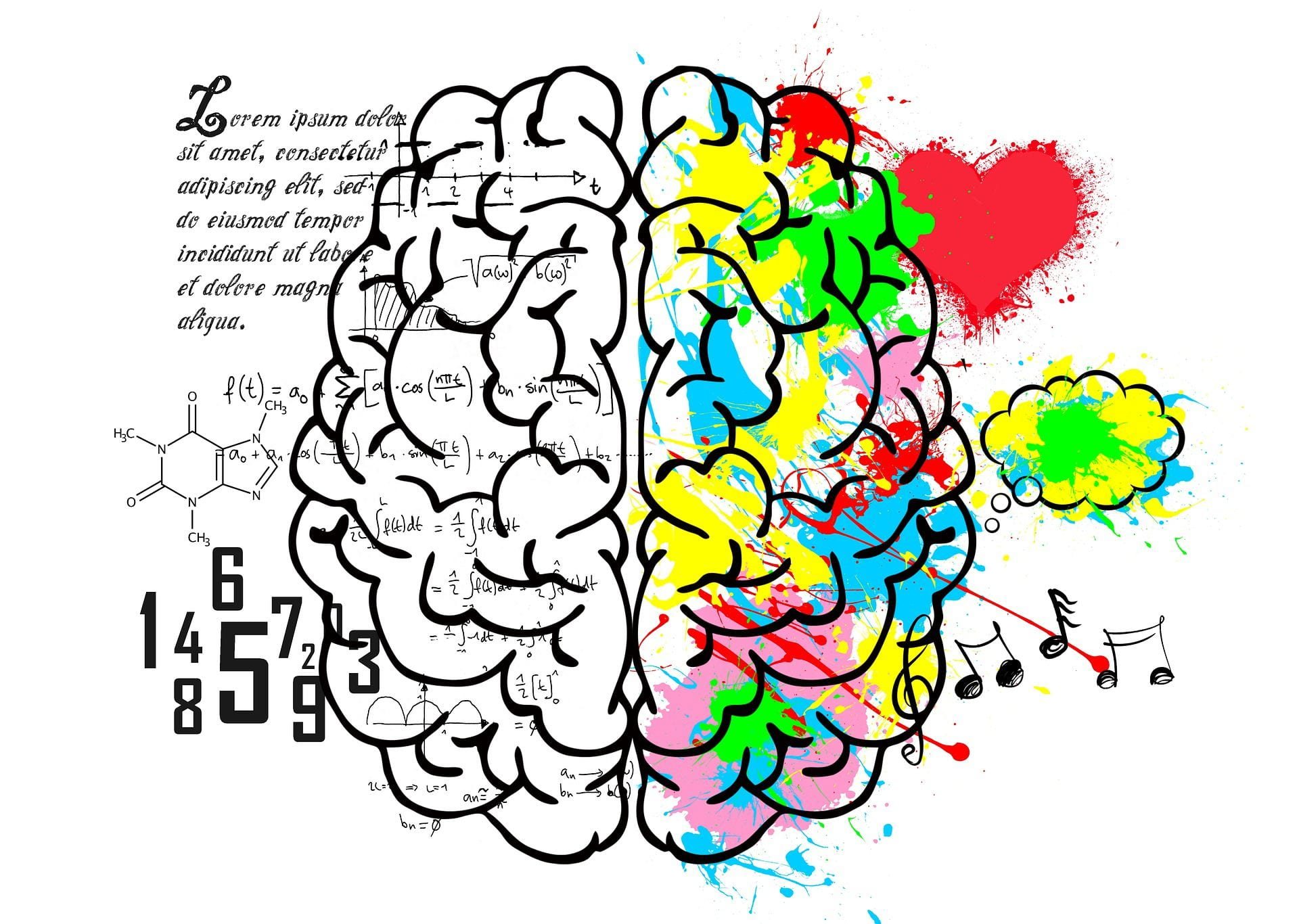 [A cartoon of the brain, with pictures of a heart, a thought bubble, music notes, numbers, a molecule, and words.]