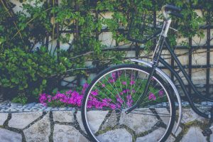 Bike-flowers-92235-large