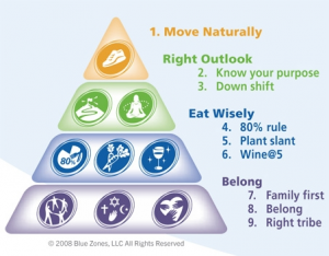 pyramid9healthyhabits