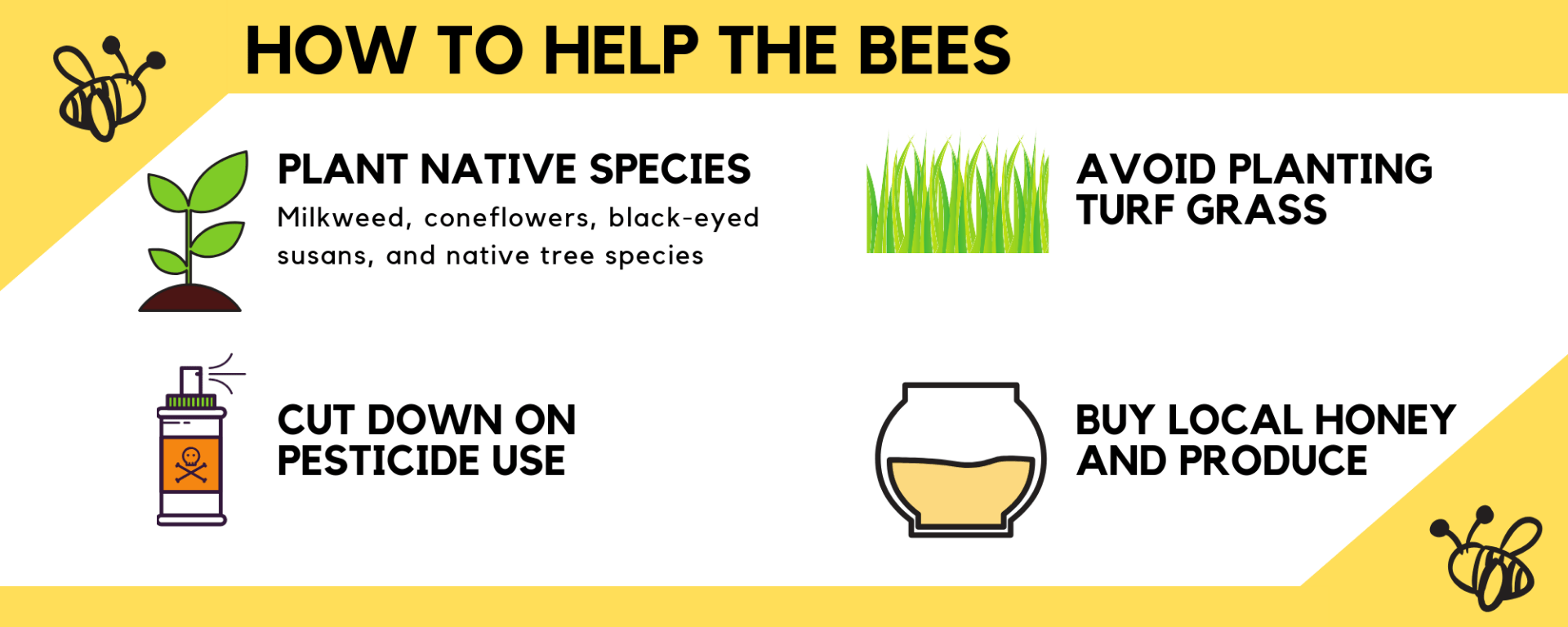 How to help bees: 1) plant native plant species like milkweed, cone flowers, black-eyed susans and native tree species , 2) avoid planting turf grass, cut down on pesticide use, and buy local honey and produce.
