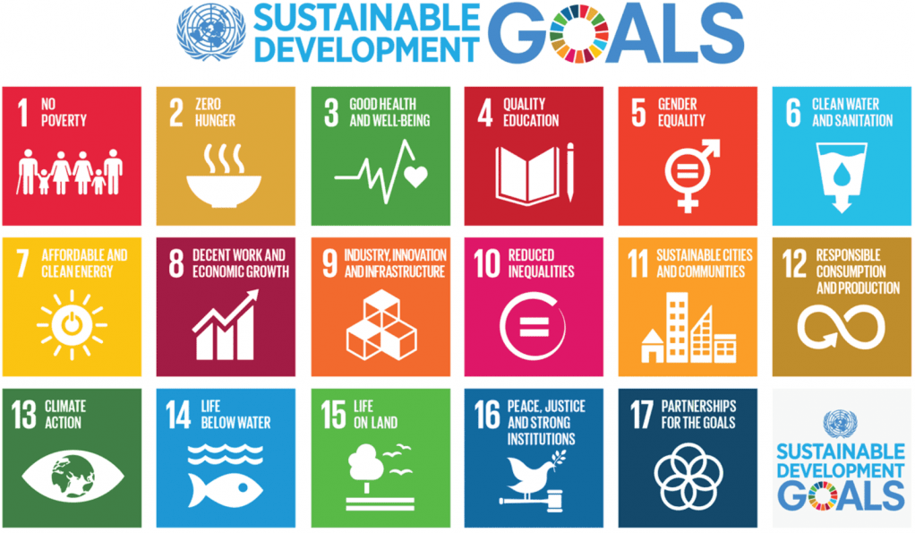 17 goals: no poverty, zero hunger, good health, quality education, gender equality, clean water, clean energy, economic growth, industry and infrastructure, reduced inequities, sustainable communities, responsible consumption, climate, life below water, life on land, peace, partnerships