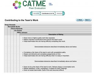 CATME Peer Review screenshot