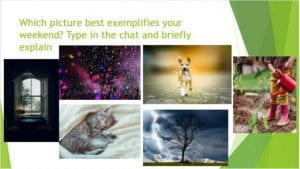 """a green and white powerpoint slide with six images: a window overlooking trees in a dark room, purple confetti and hands, a grey kitten snuggling in a white bed, a tan and white dog running towards the camera, a tree against a stormy sky, and a white child holding a red watering can over a plant. The powerpoint slide reads """"which picture best exemplifies your weekend? Type in the chat and briefly explain."""""""
