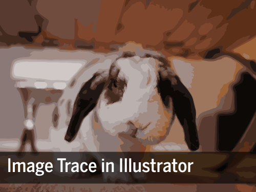 Title Image. A bunny under a table sketched using image trace.