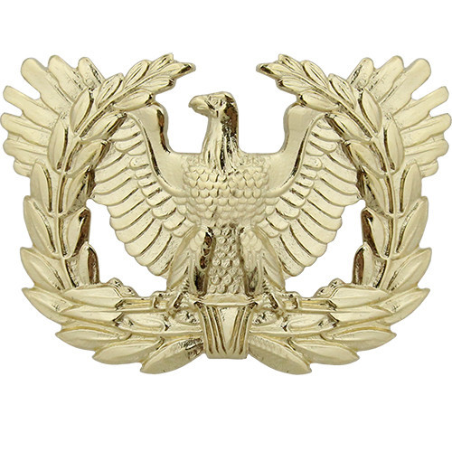 80250_us_army_cap_device_warrant_officer_1_grande-1