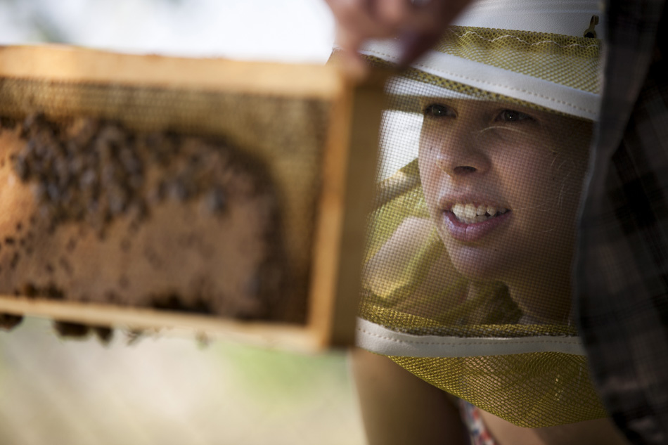 Ellie Symes, CEO of The Bee Corp., wears a beekeeper's hat and mask as she inspects a beehive's frame.