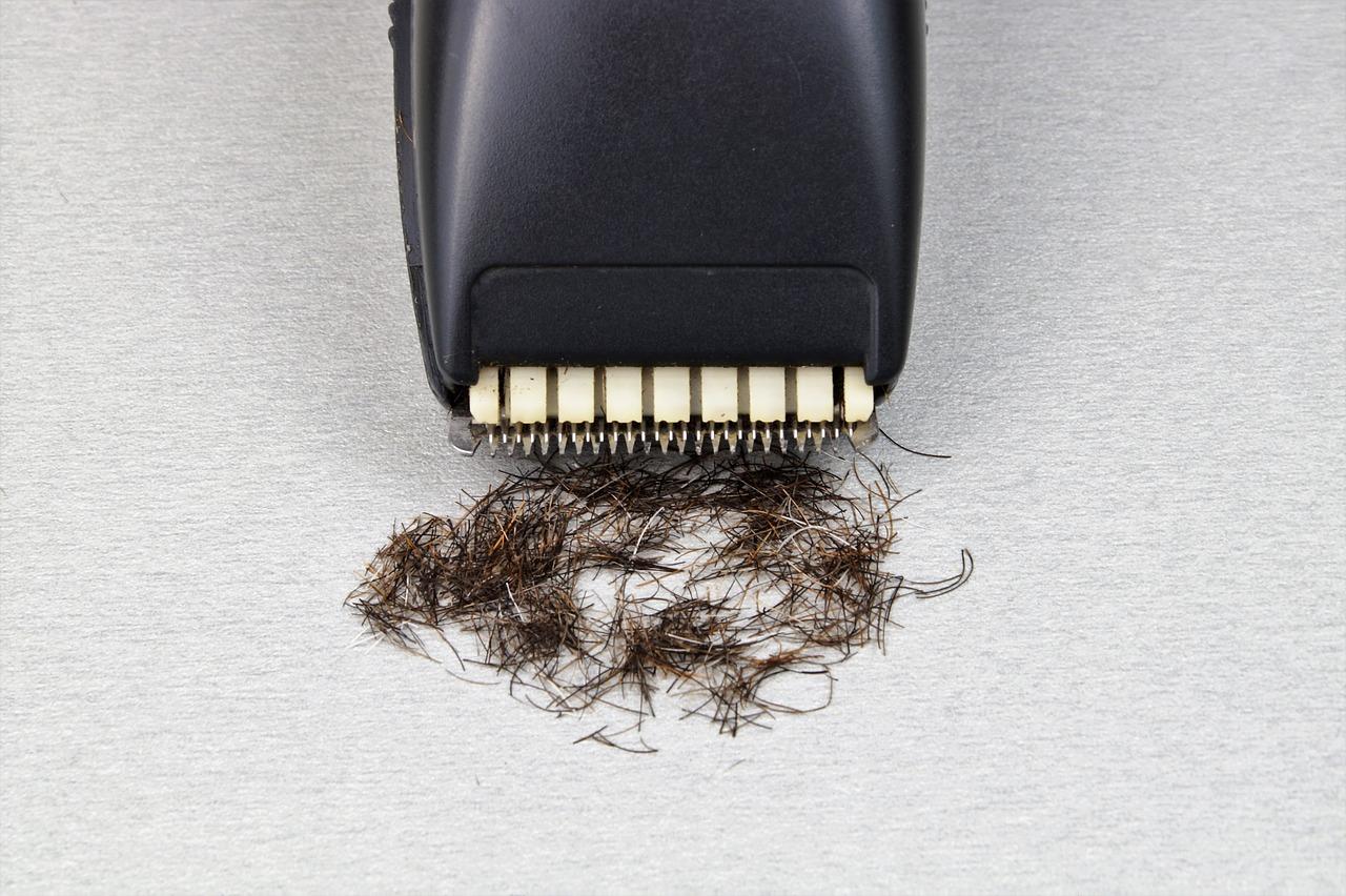 hair clippers and cut hair
