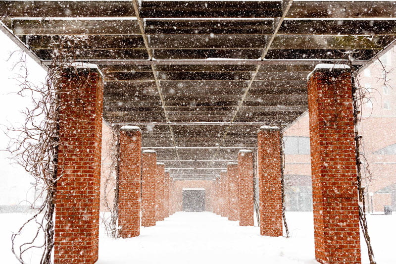 snow falling in the hine hall courtyard