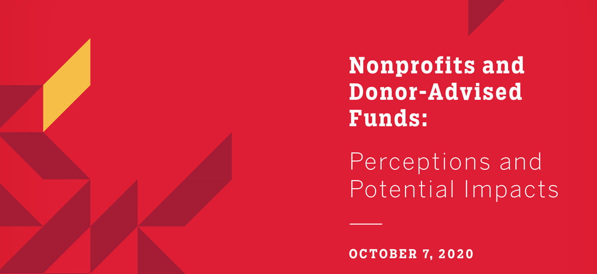 Nonprofits and Donor-Advised Funds report cover