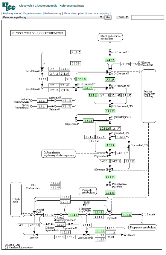 Screenshot of KeggMapper output - color-coded pathway results
