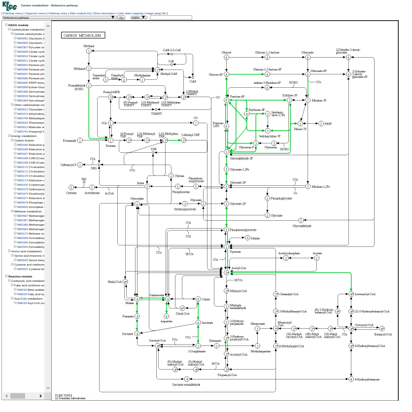 Screenshot of the expanded pathway results from GhostKOALA